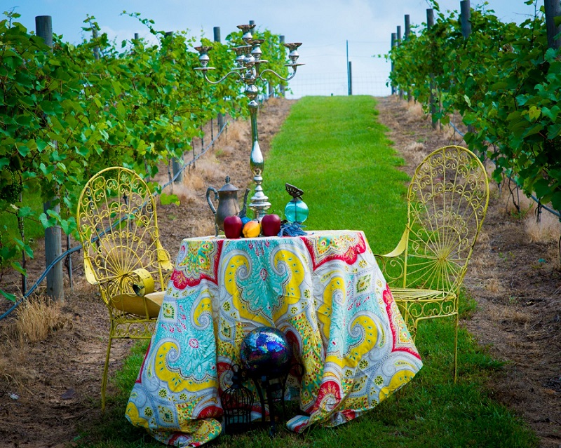 Sabor a Pasion Vineyard by Lee Loveless Photography