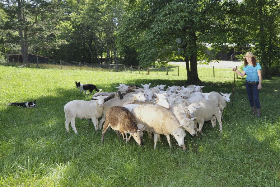 Farming mentors help you learn to farm