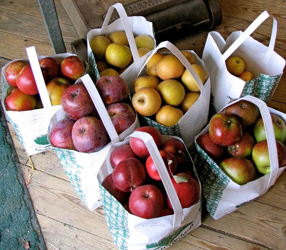best apples for applesauce