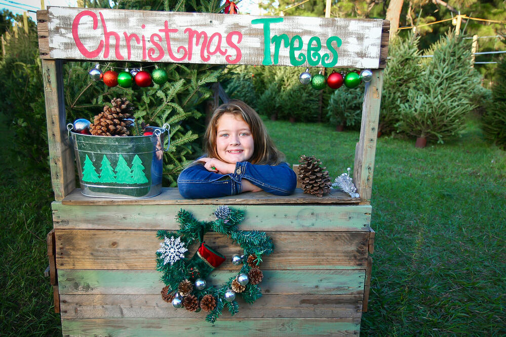 12 Christmas Tree Farms in the South