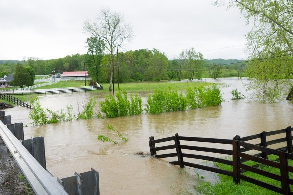 preparing a farm for a hurricane
