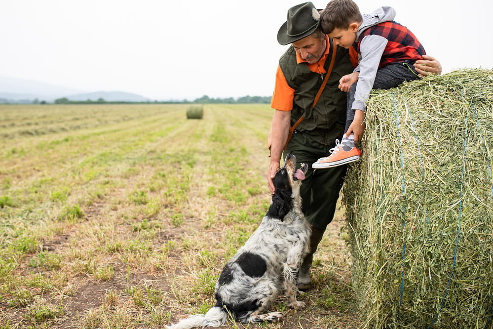 how to choose a livestock guardian breed