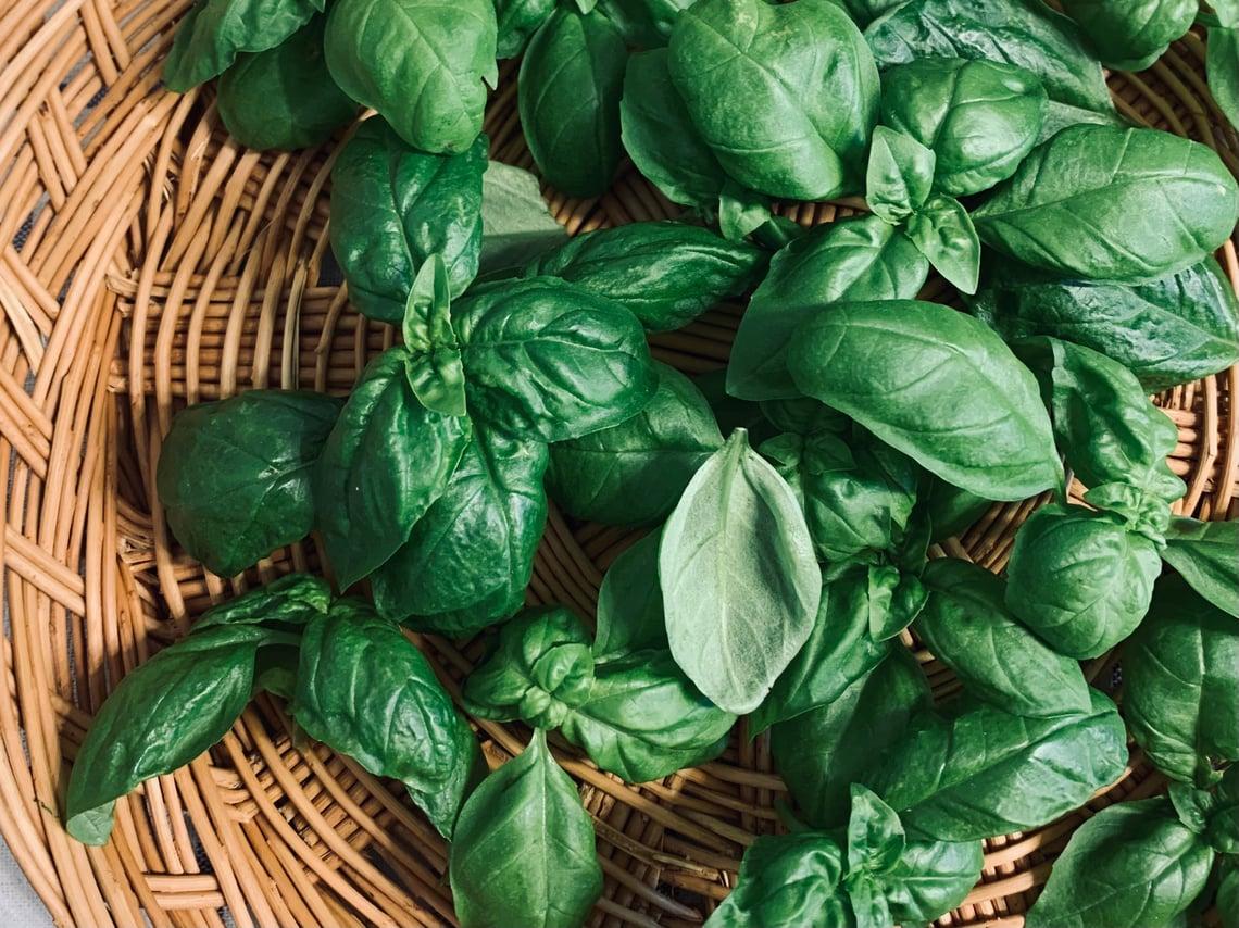 5 Ways to Preserve Fresh Basil