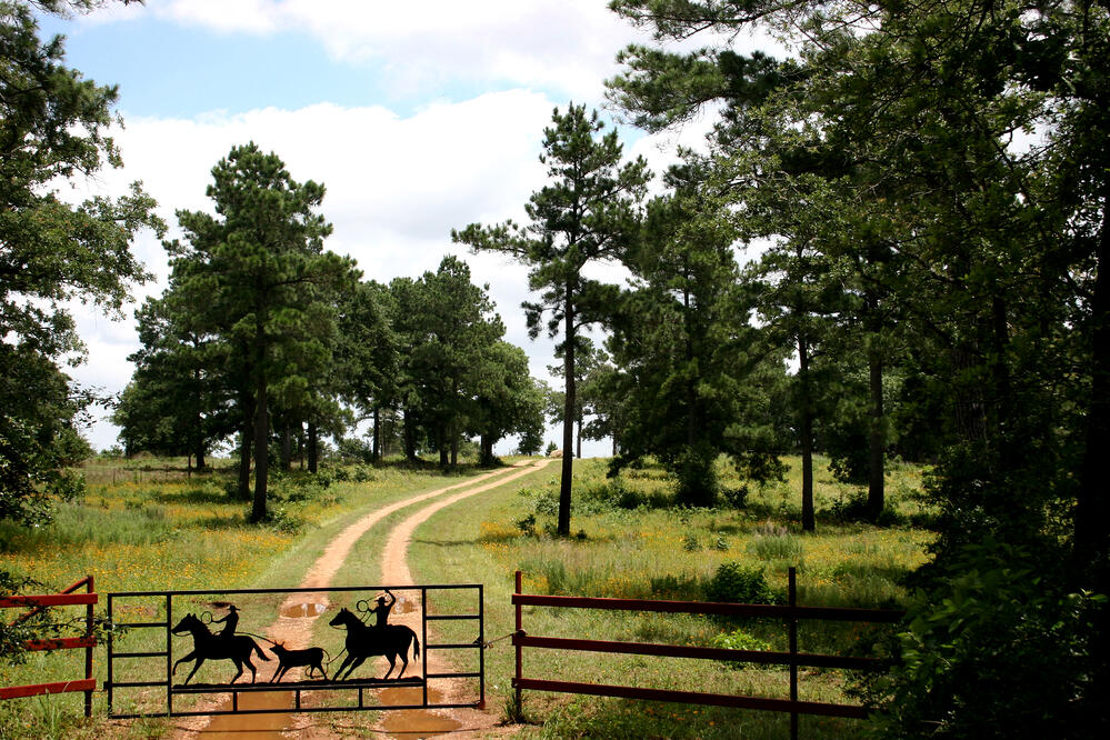 tax exemptions for texas land