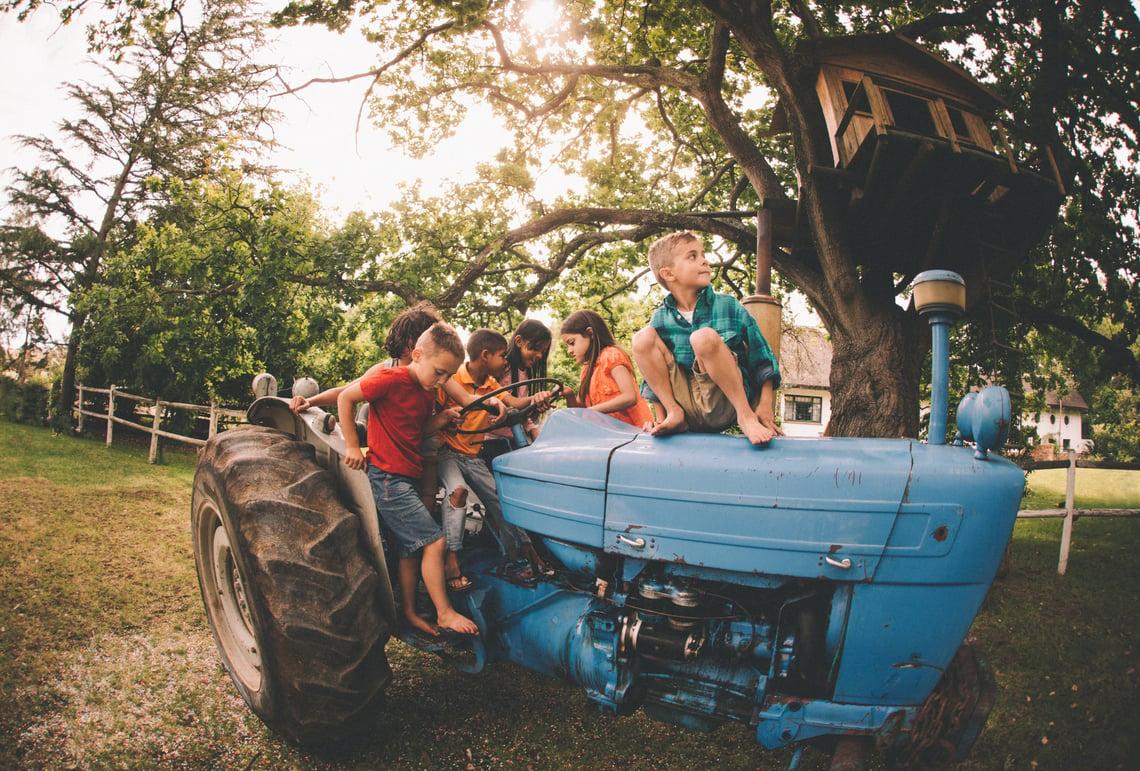 The joys of summer spent on the farm