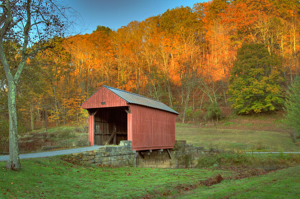 what to look for in a homesteading property