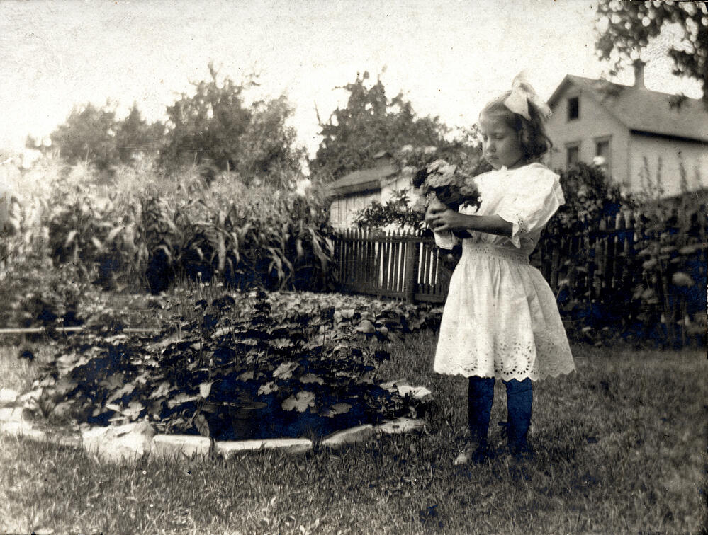 what is a victory garden?