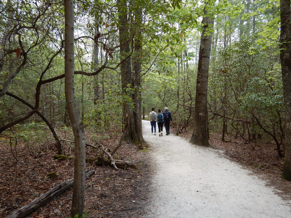 Hikers finding safer ground