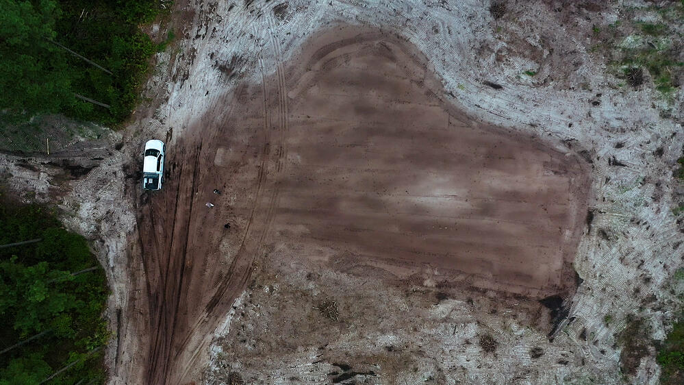 Top 10 Land Clearing Tips from the Experts
