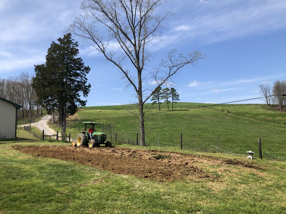 how to plant a victory garden