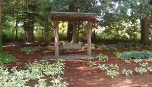 swing in hosta garden