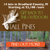 Land for sale in Bradford County FL