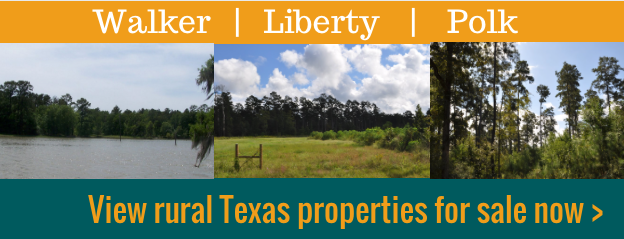 Texas land for sale in Walker Liberty and Polk Counties