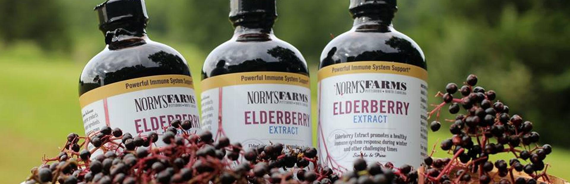 elderberry_slider.jpg