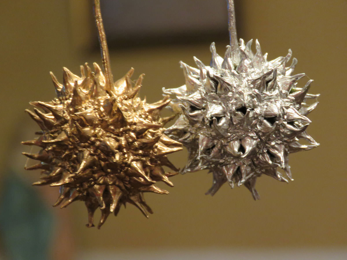Holiday Decorating with Nature's Beauty