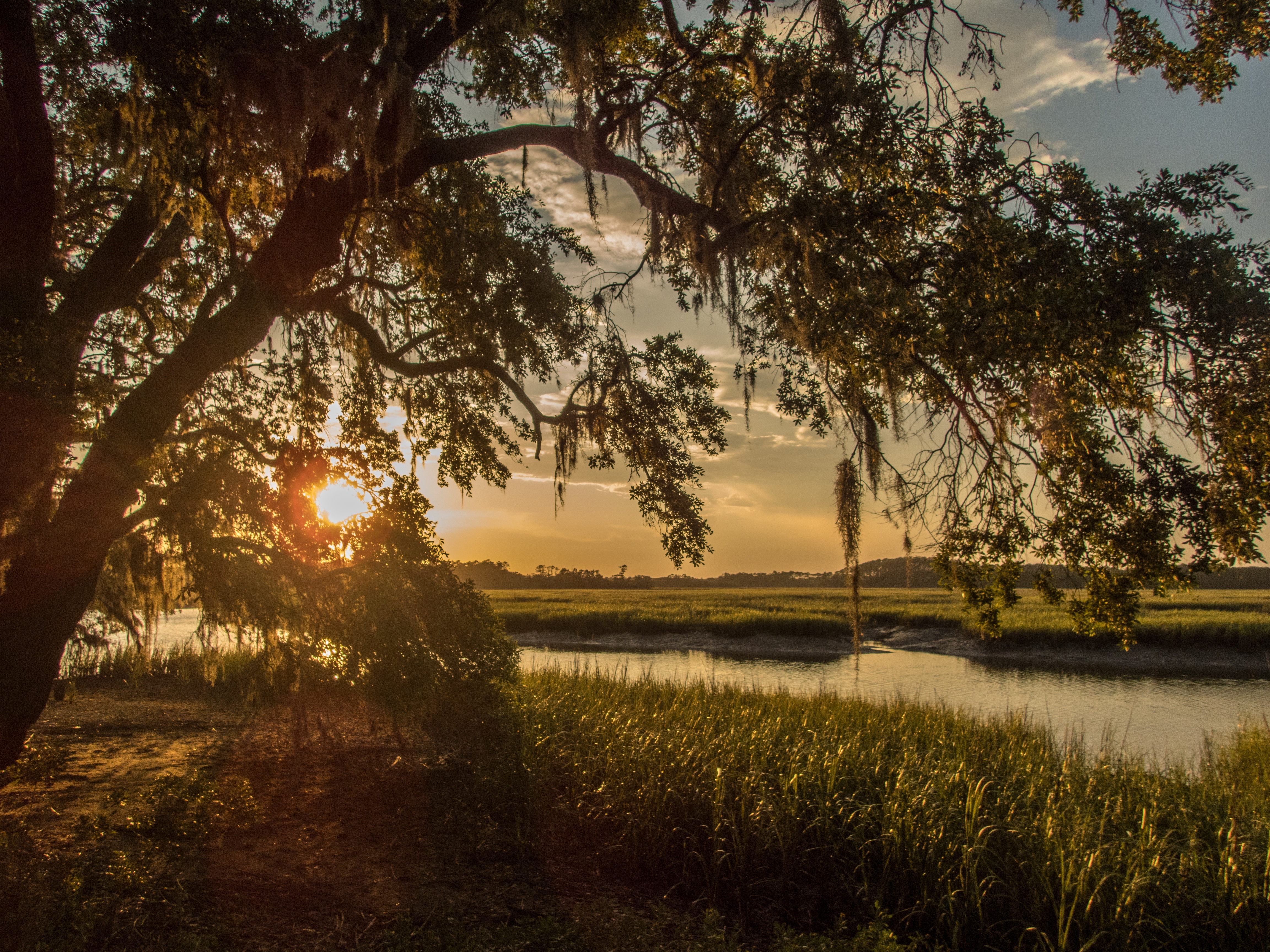 Tips for Buying Land in Florida   Rethink:Rural