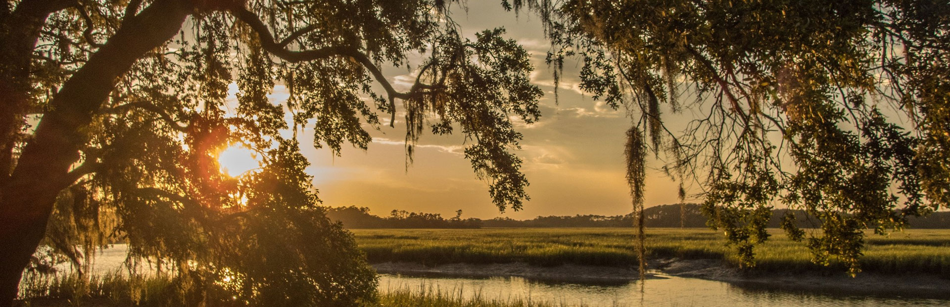 how-to-buy-land-in-florida