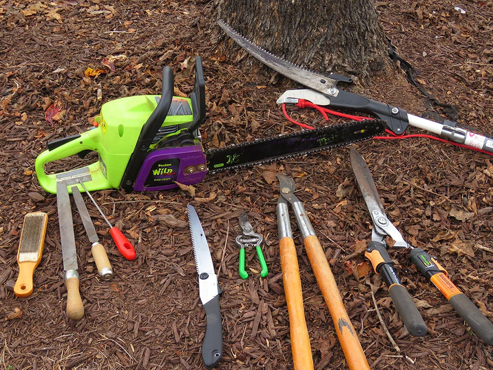 Yard Maintenance Tips for the New Year