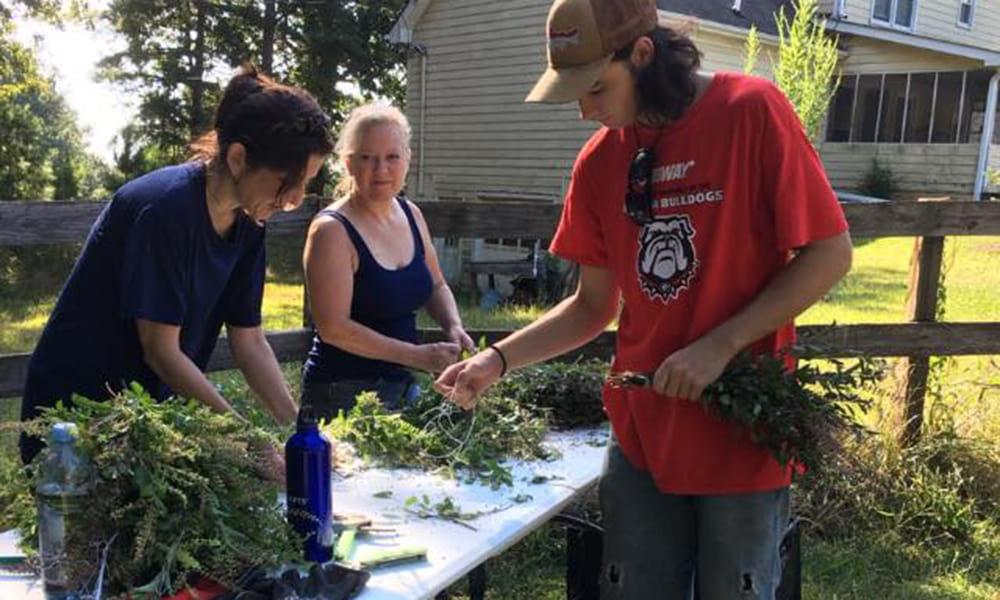 Bella Vista FarmCreating Community, Herbal Elixirs and Empowered Health in Monroe, GA