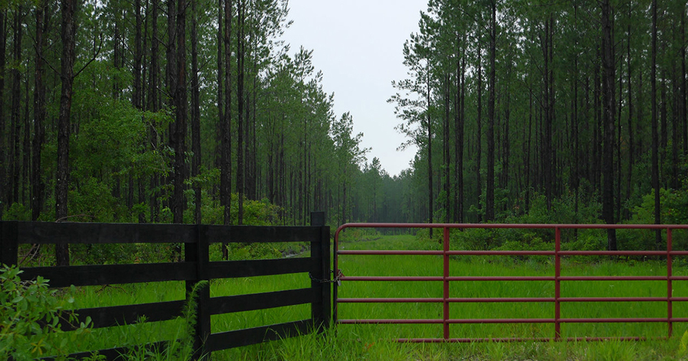 8 Ways to Finance a Land Purchase: A look at the Pros and Cons