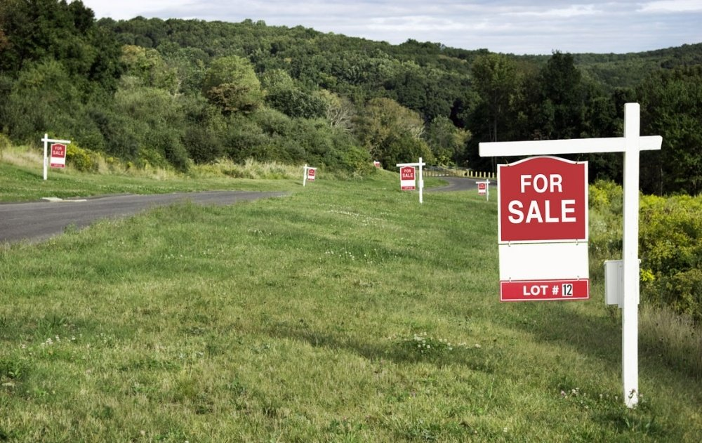 Buying land: What the experts have taught us