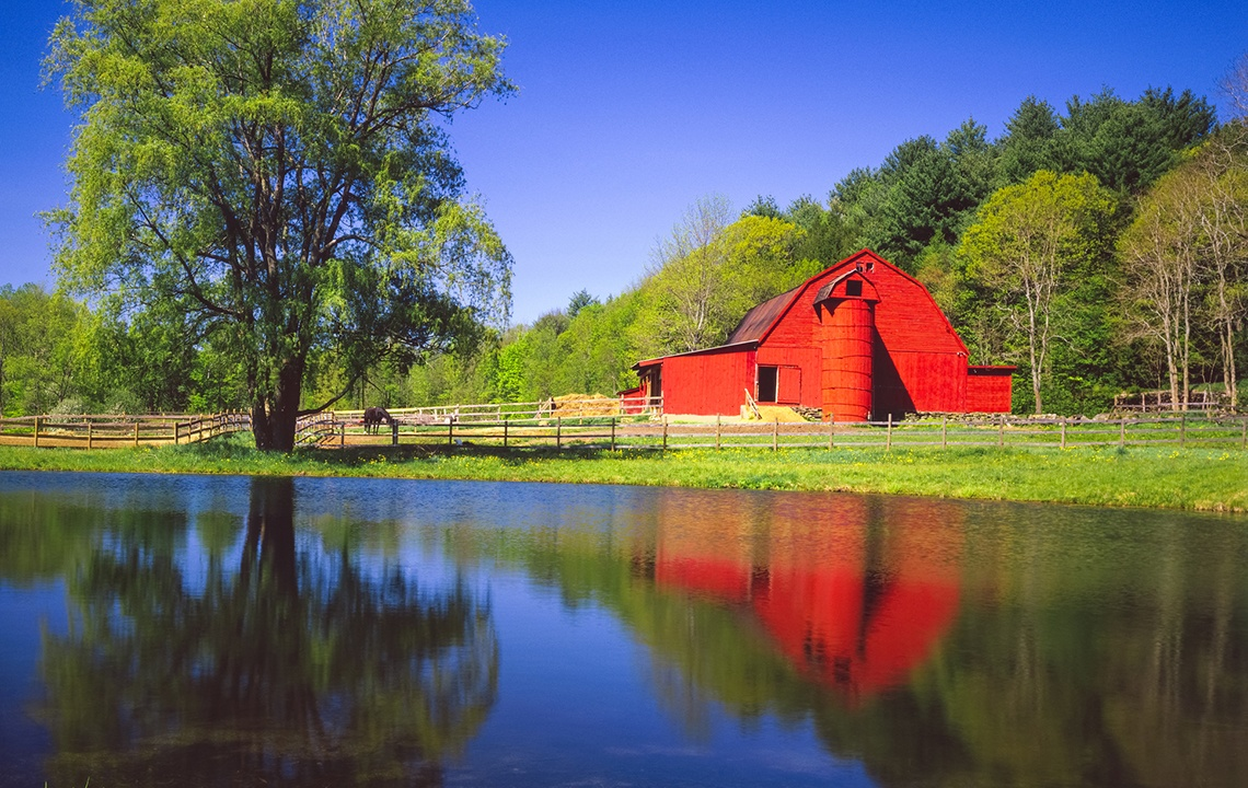How to Build a Pond or Lake on Your Rural Property