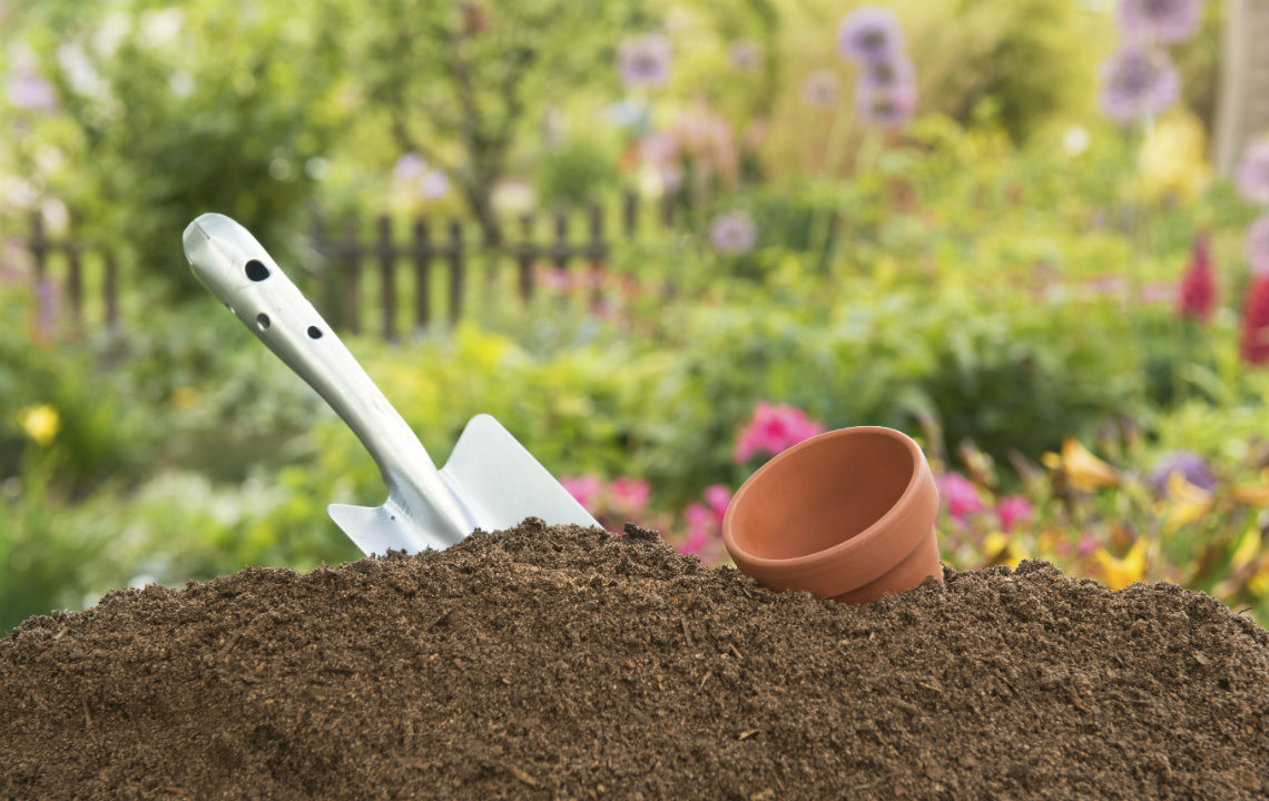 How to know your soil type - and why it's important