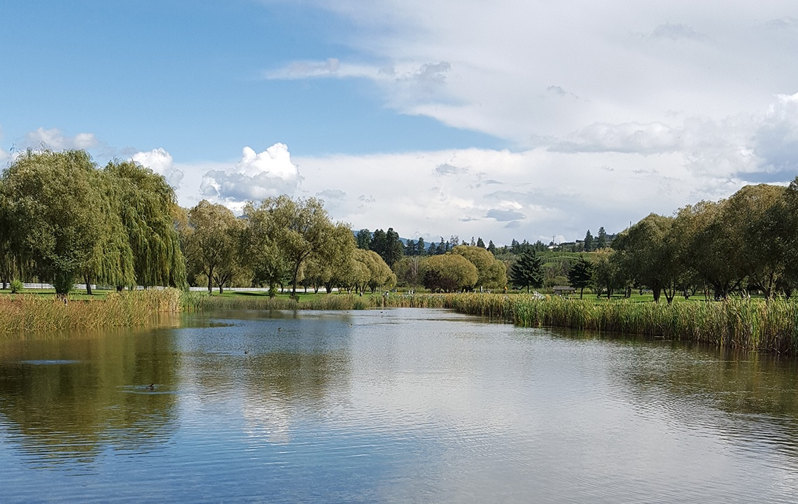 How to Naturally Maintain Ponds and Lakes on Your Rural Property