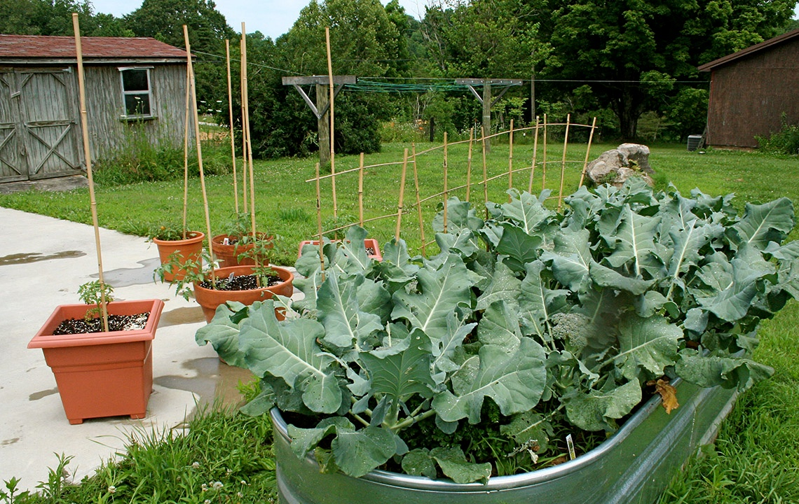 How to Plan and Plant a Southern Spring Garden