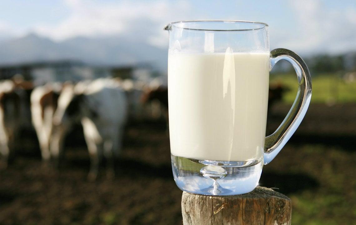 9 easy ways to use fresh milk