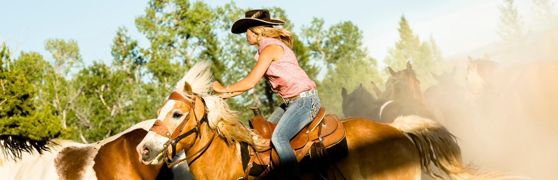 Slider Horseback Riding for Fitness.jpg