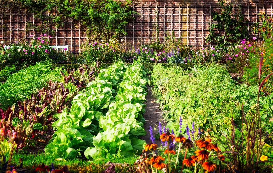 7 Tips for Starting a MasterPlanned Garden on Your Land
