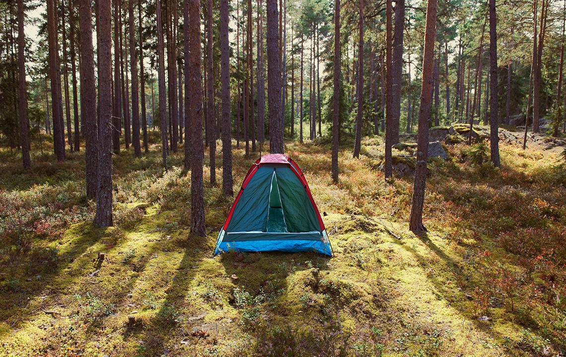 How to Create a Campsite on Your Land