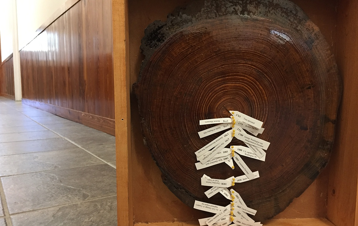 How a forester created wooden decor from a piece of history