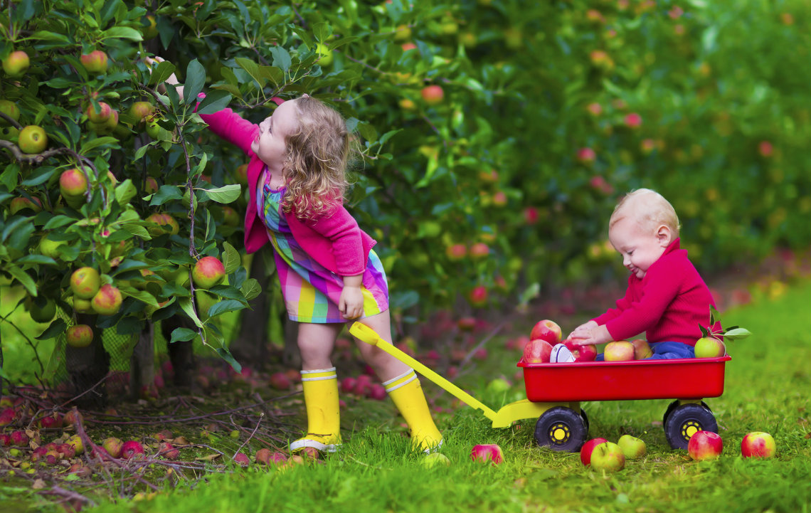 The many ways country living benefits your health