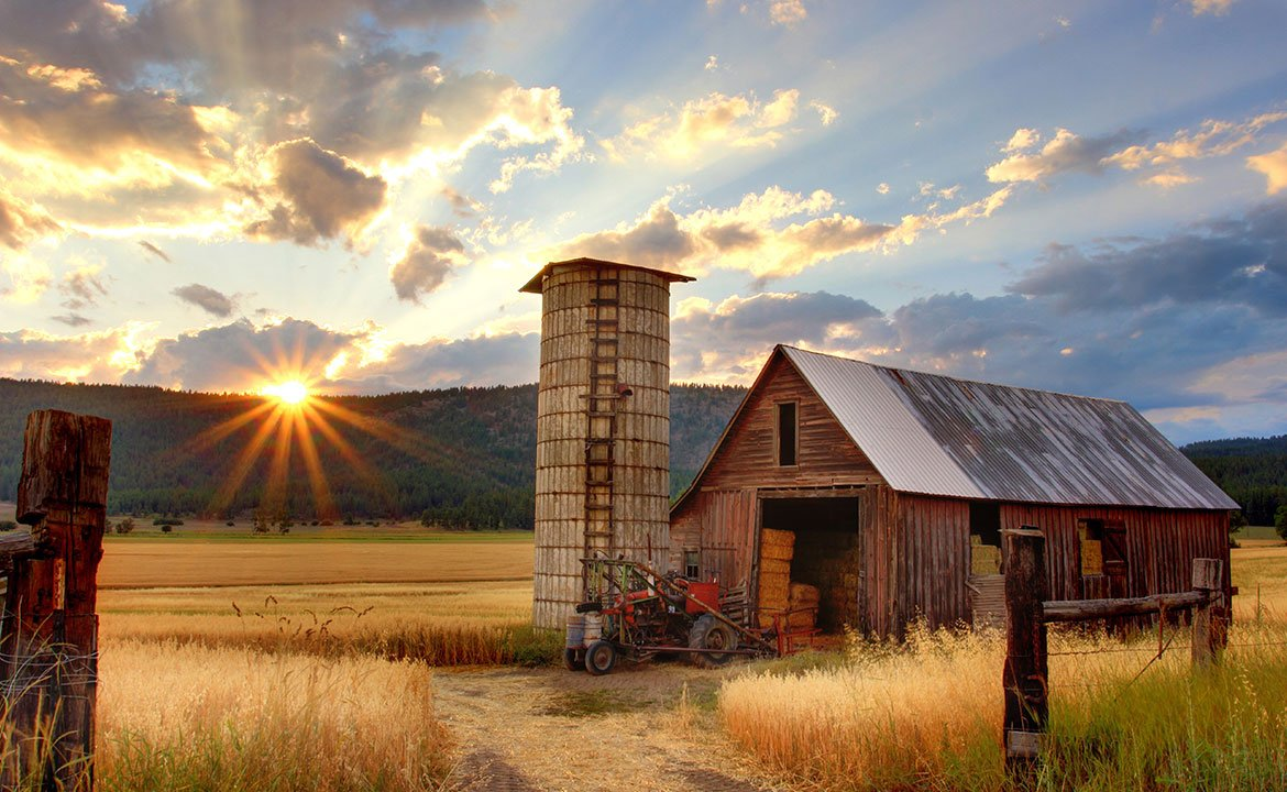 7 Funding Options For Small Farms