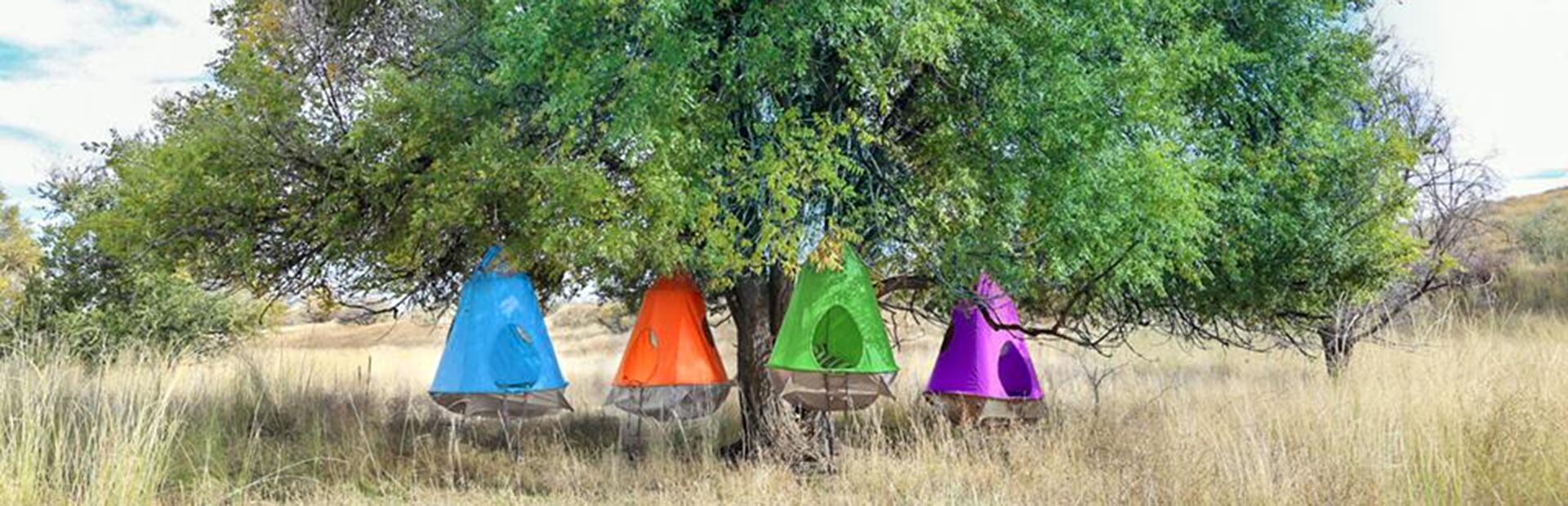 TreePods_Hanging_from_Tree_Slider.jpg