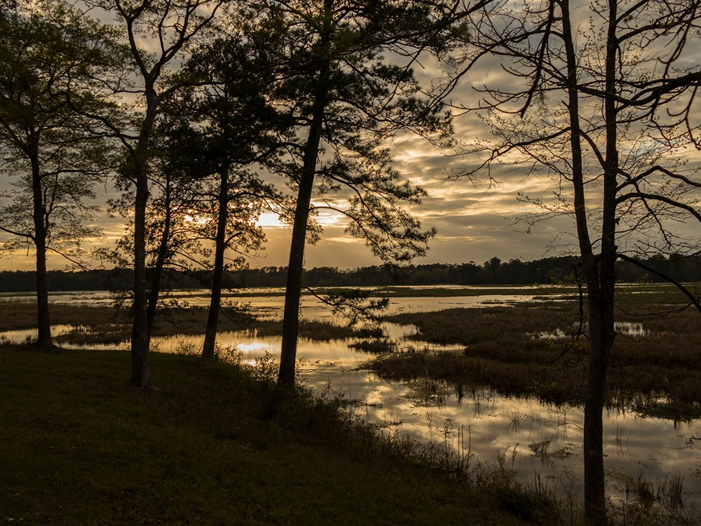 Our favorite Mississippi State Parks