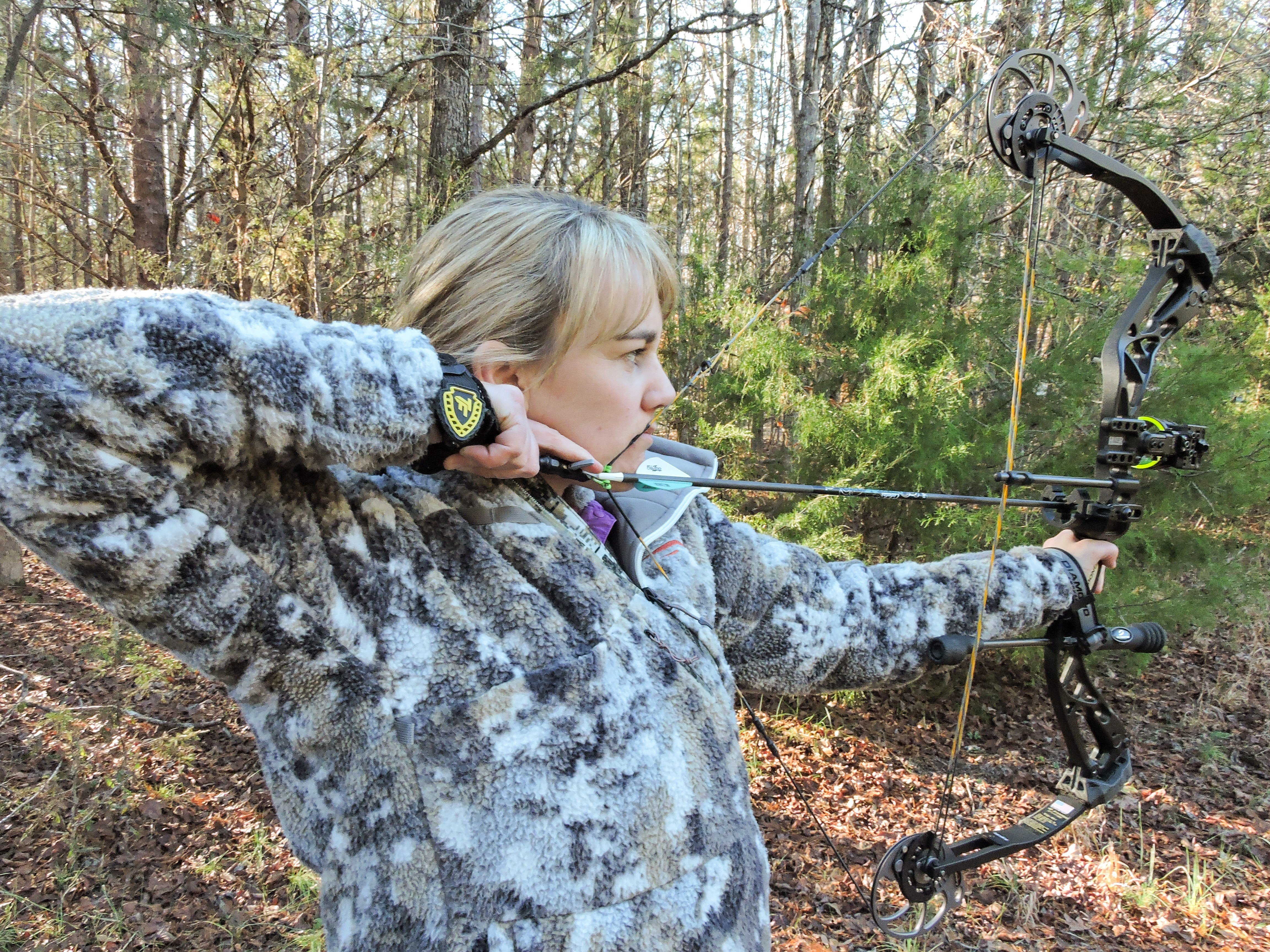Bowhunting for Beginners: An Insiders Guide on How to Get Started