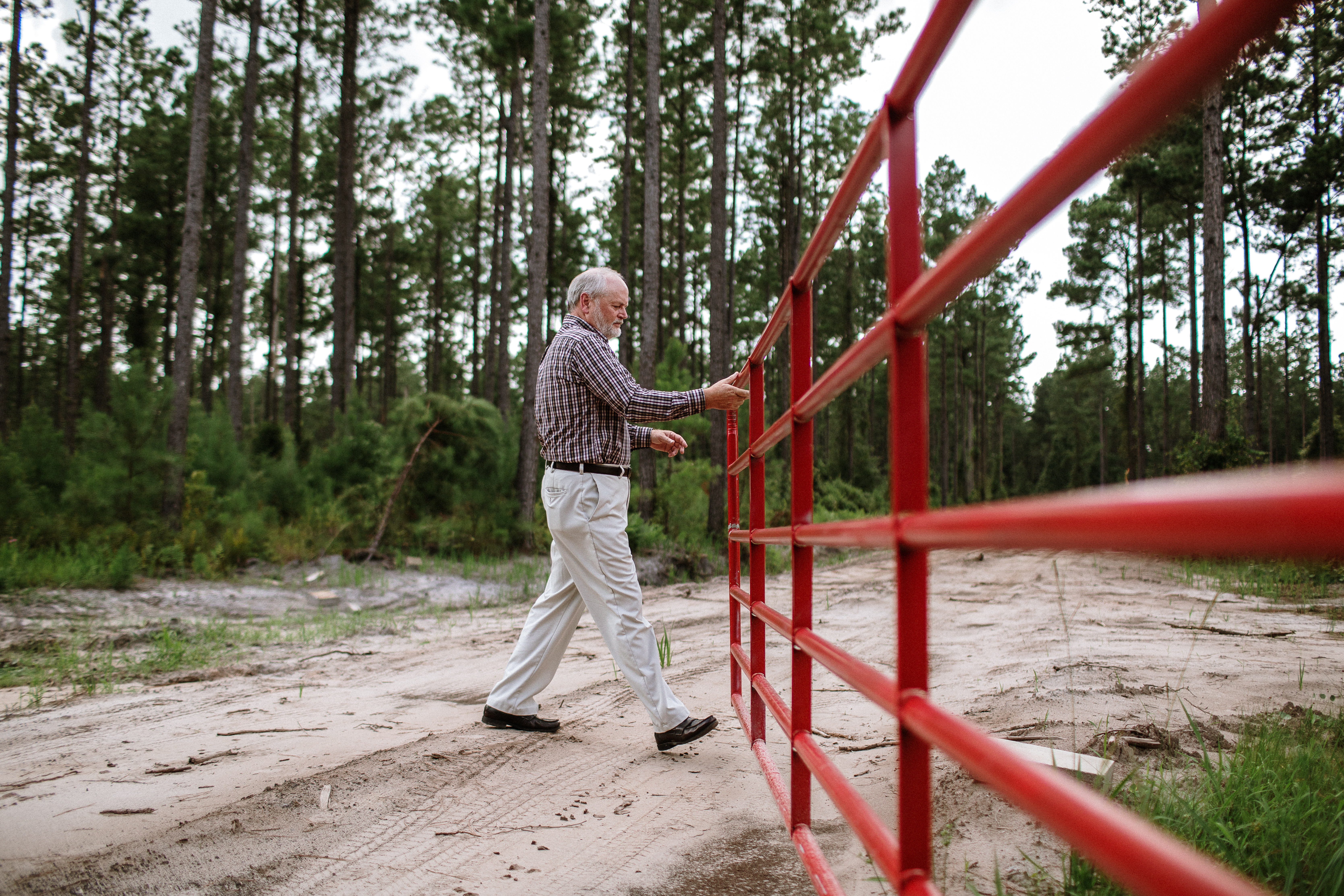 How to Clear Land to Build a Homestead — Tips and Advice from a Florida Landowner