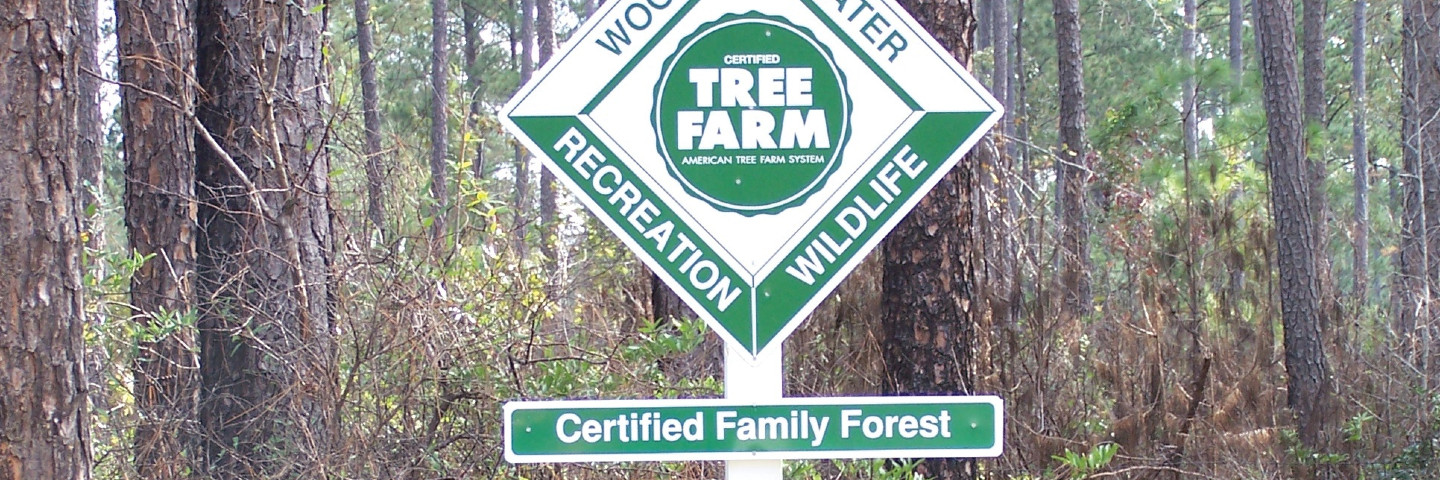 Become a certified tree farm