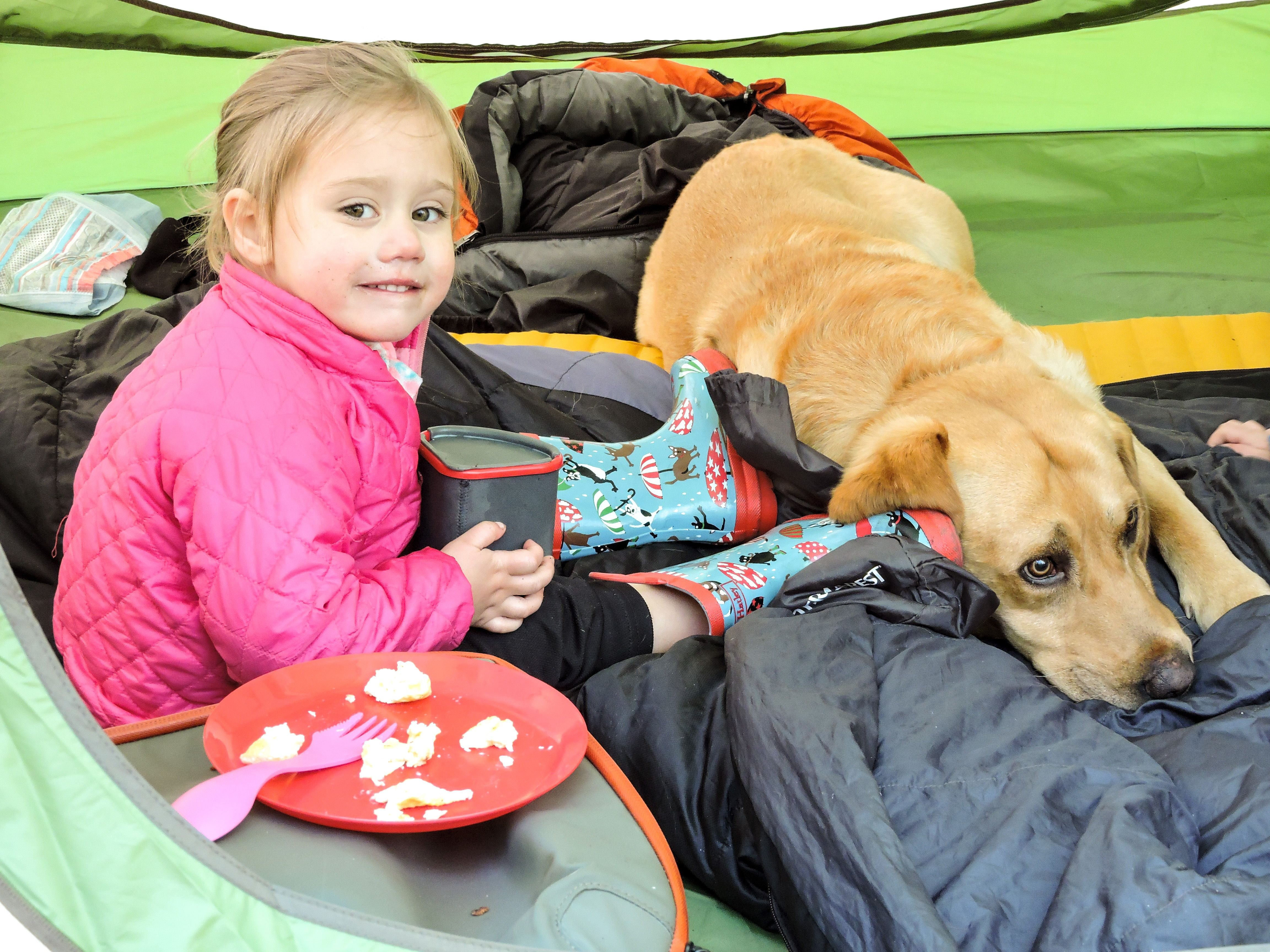 Camping with Toddlers---it is possible, here's how