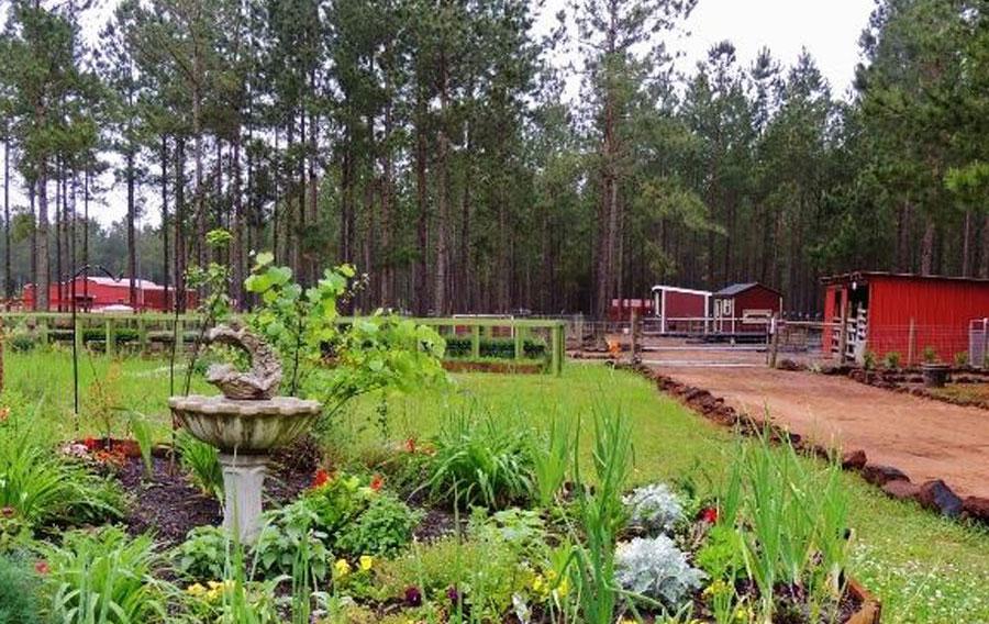 NaVera Farms a leader in Feng Shui farming