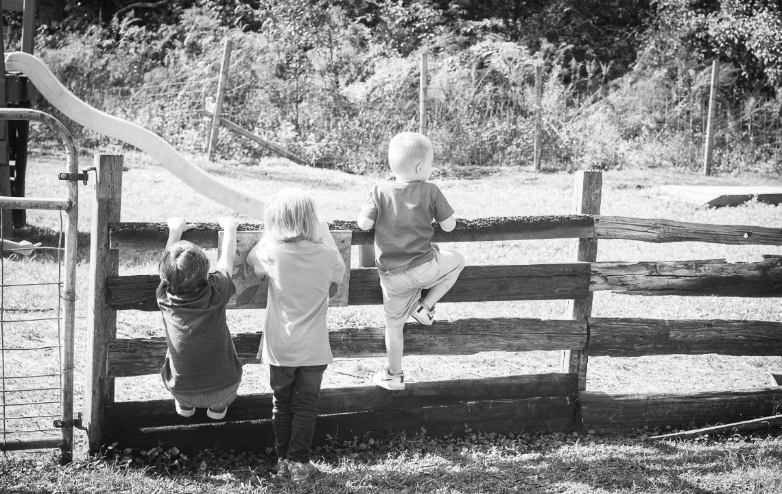 """Free-range"" daycare: Preschool on a farm"