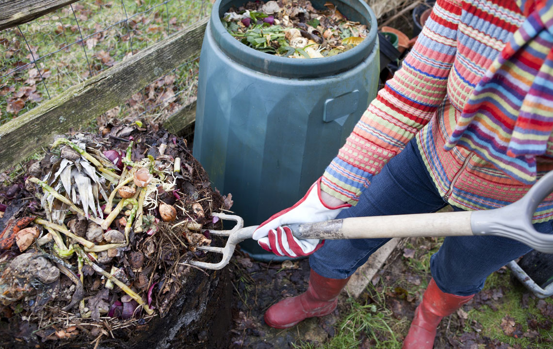 Composting for the Vermin-phobic - One Couple's Harrowing Story