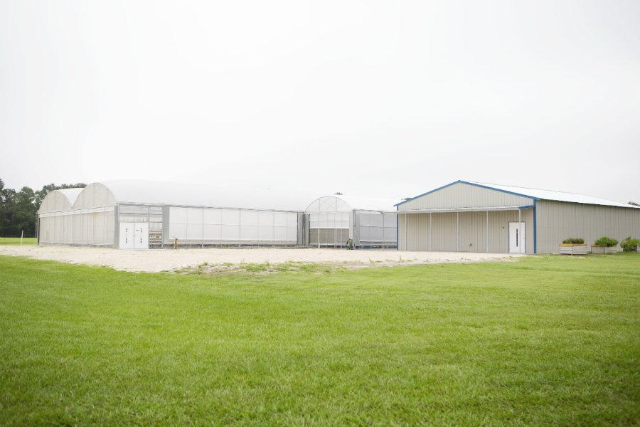 Traders Hill Farms aquaponics barns
