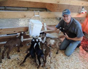 NaVera Farms Owner Greg Ferguson with Nubian Goats