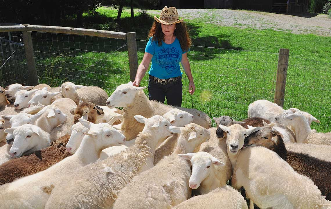 Meet Vickey: The sustainable shepherd