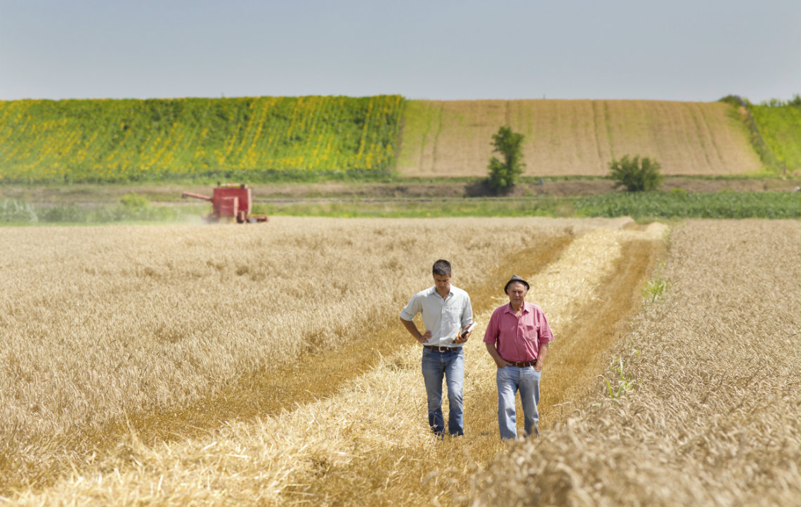 How to Find Your Farming Mentor