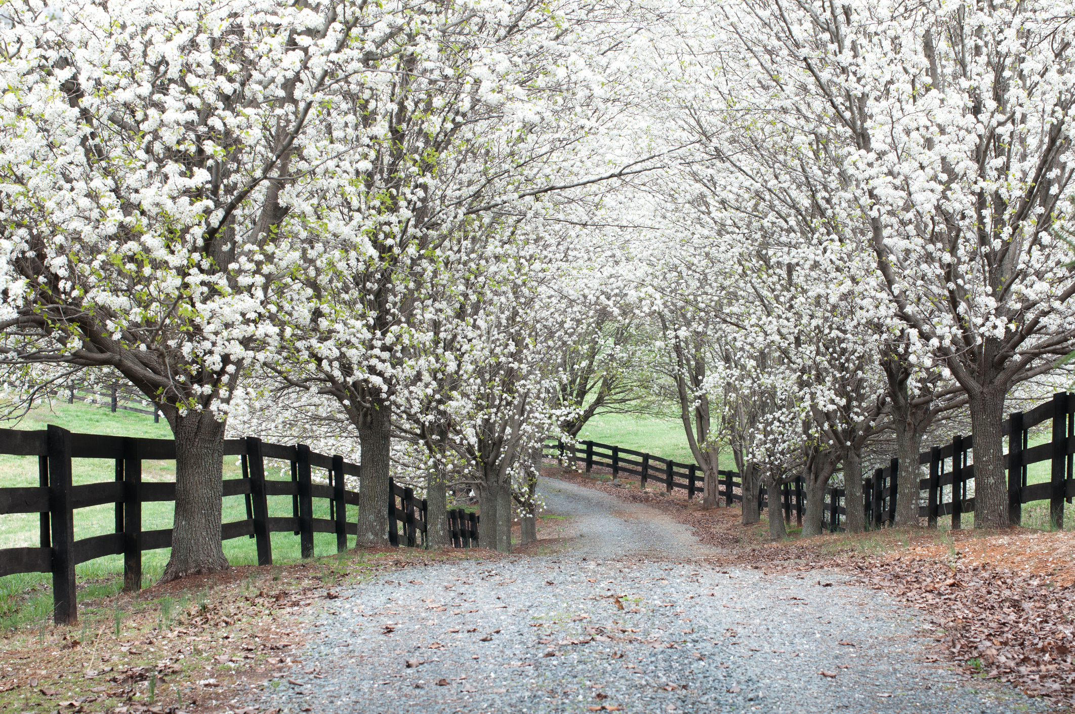 Why and How to Install a Gravel Driveway On Your Rural Land